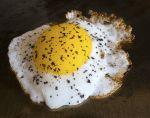 User:Lynne Name:Fried Duck Egg.jpg Title:Fried Duck Egg.jpg Views:1 Size:163.20 KB