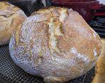 User:Lynne Name:Gift Loaf.jpg Title:Gift Loaf.jpg Views:6 Size:264.49 KB